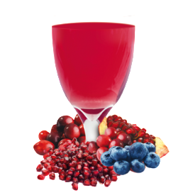 Blueberry and Cran-Granata Flavoured Drink